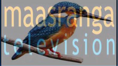 Bangla TV – VE Broadband Network